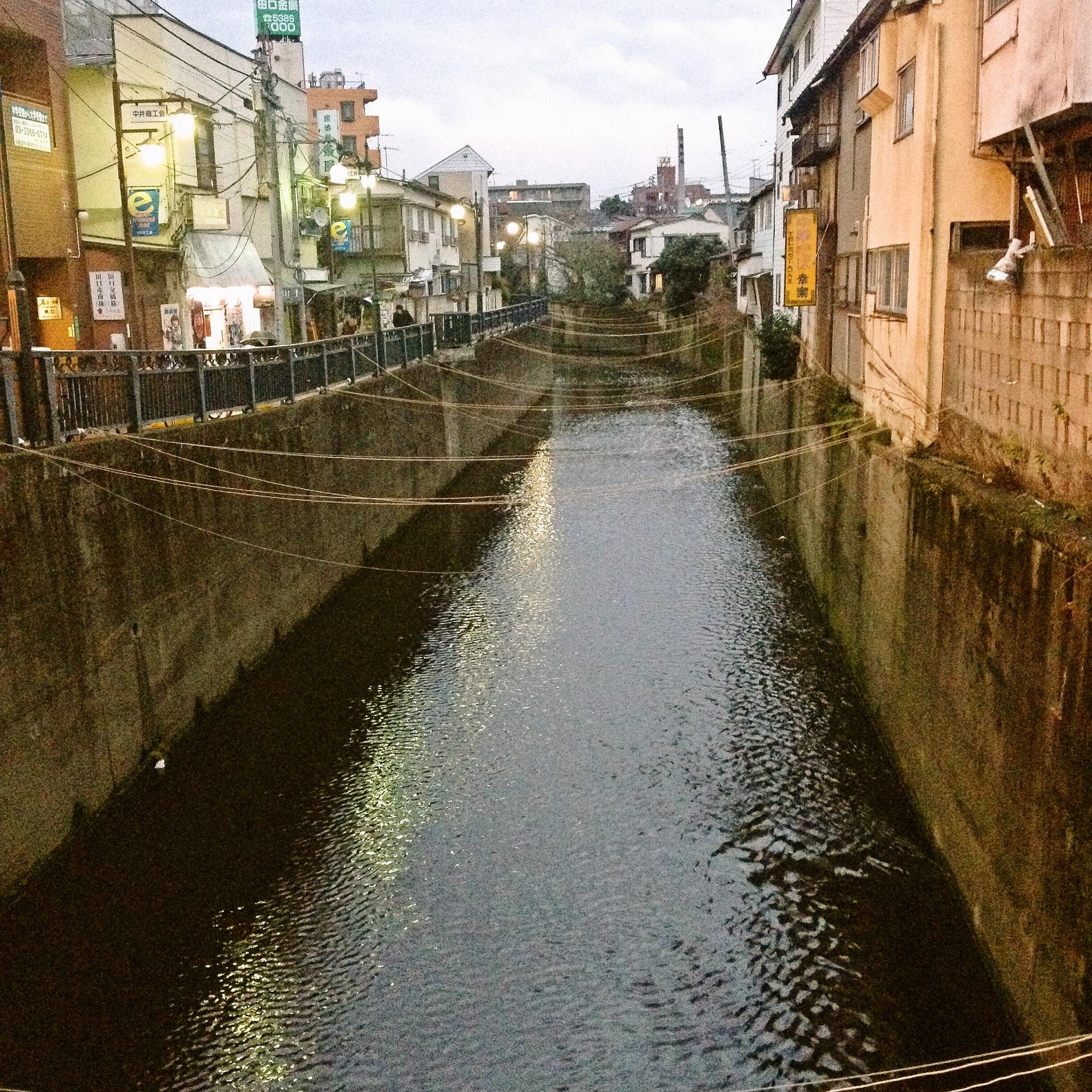 西武新宿線中井駅前妙正寺川ワイヤー群