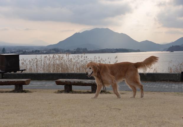 ★河口湖3