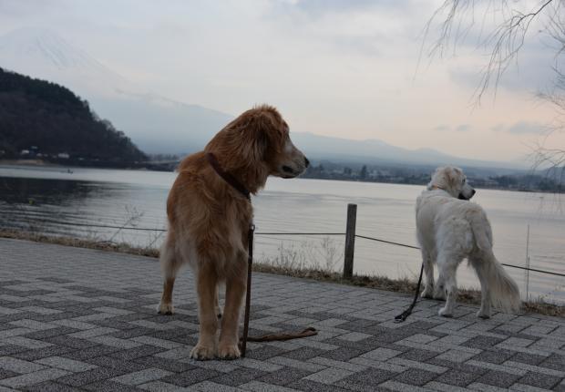 ★河口湖6
