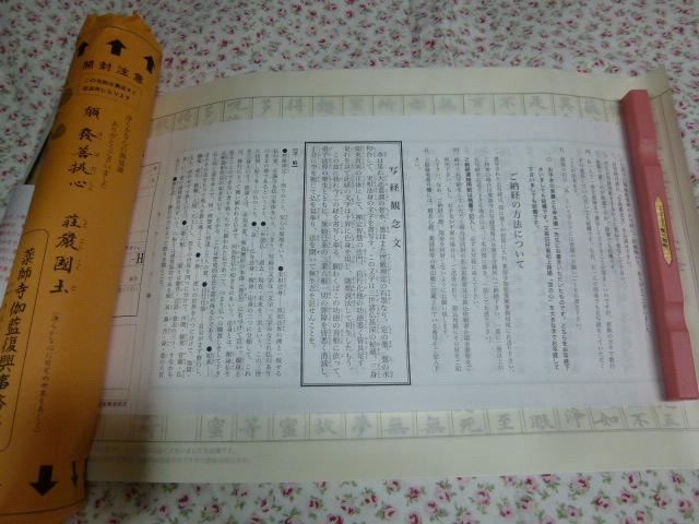 P1240577.jpg