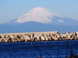 0112-fujimisaki2.jpg