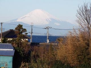 0112-fujimitohama1.jpg