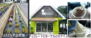 0606jibaoaisuya1.jpg