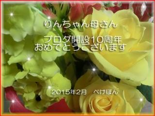 119968_1422845883.jpg