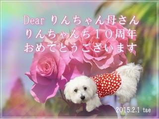 119968_1422855246.jpg