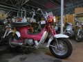 DSCN2008.jpg