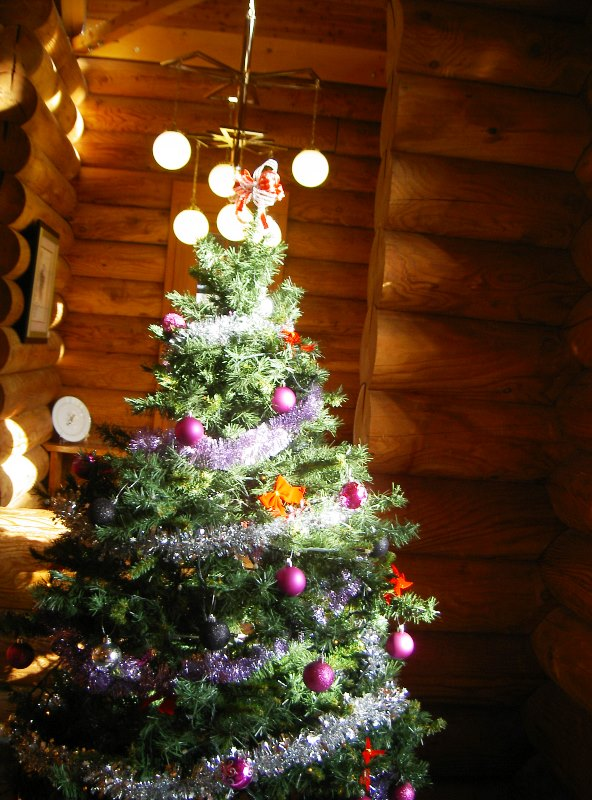12月 december