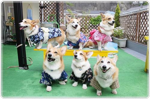浴衣ショット☆