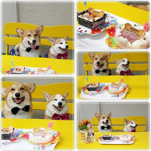 合同誕生日~♪