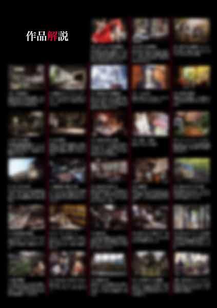 廃墟写真集「廃景#4」_作品解説