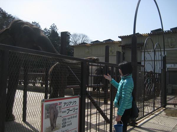 1502chiku22.jpg