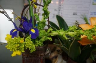 アイリスと菜の花1