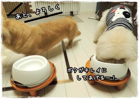16日の晩御飯1