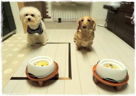 16日の晩御飯2