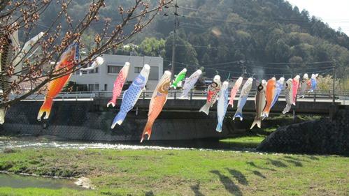 井原大橋 鯉のぼり