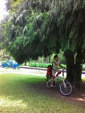 201517植物園3