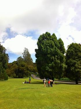 201517植物園4