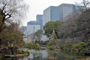 Park Scene, Tokyo Japan