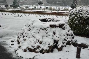 Park Scene in Snow, Tokyo Japan