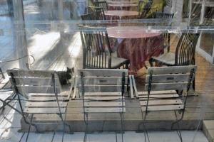 Tokyo Park Cat in the Patio Enclosure