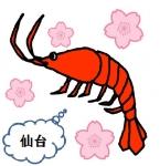 sakuraebidayo