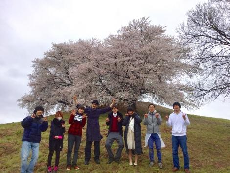 撮影後の記念写真、桜を背景に