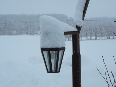 街灯にも積雪
