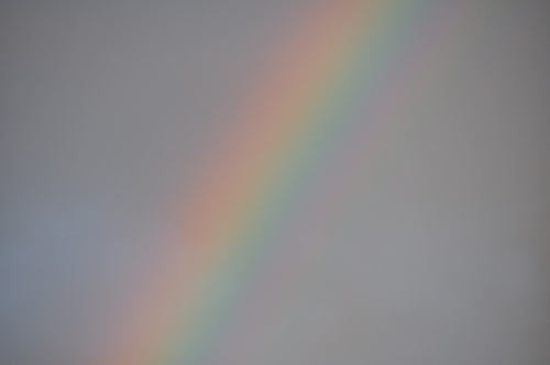 虹でっかい