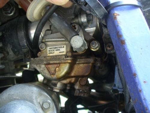 P1240113.jpg