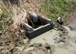 集水桝修理