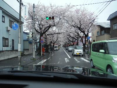 2015_0420(008).jpg