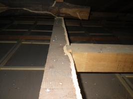 2階天井裏の蟻道