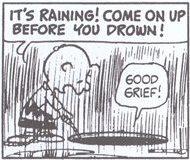 シュローダー_ピアノ(13)雨だよ、溺れる前に上がるんだ