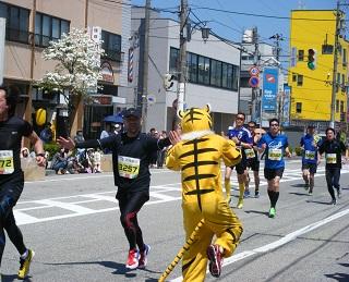 しんきろうマラソン 004 (2)