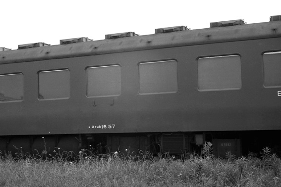 TS12.jpg