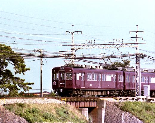 mkatsu10.jpg