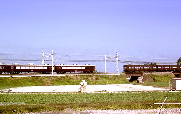 mkatsu11.jpg