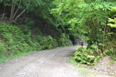 剣山スーパー林道マウンテンマラソン