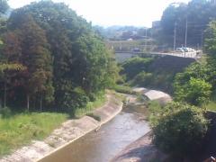 付近を流れる石川。