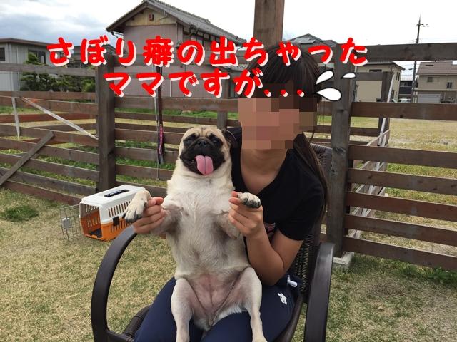 IMG_2188.jpg