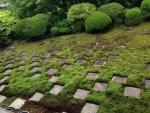 2015京都旅行東福寺「国指定名勝 東福寺本坊庭園」