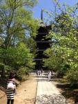 仁和寺五重塔2