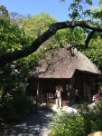 2015年京都嵐山 柿落舎