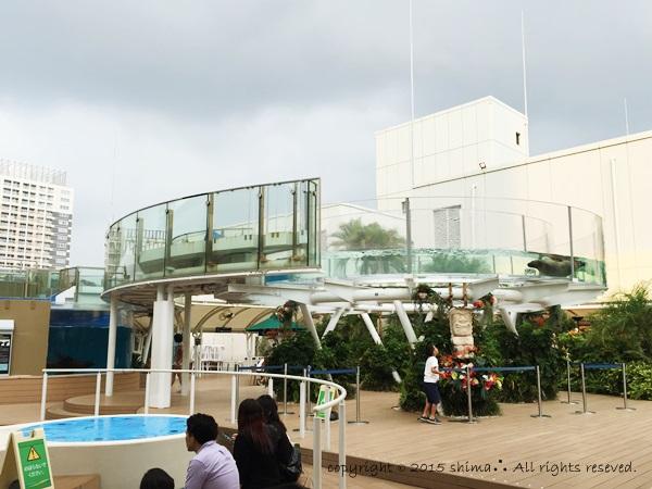 20150819サンシャイン水族館5