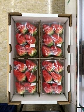 イチゴ20150130