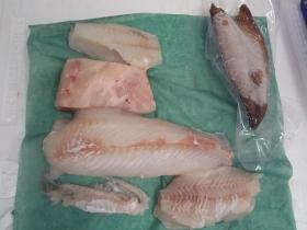 5鮮魚セット20141231