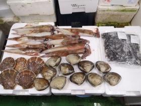 13鮮魚セット2015131