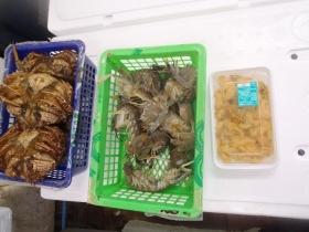 1鮮魚セット2015430