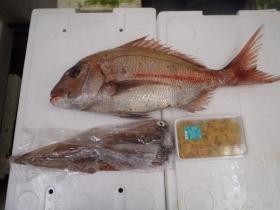 5鮮魚セット2015430