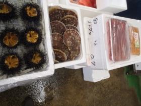 9鮮魚セット201561